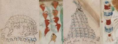 Voynich Manuscript Depictions of Mexican Things